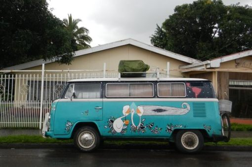 Costa Rica Tour Herbst 2013