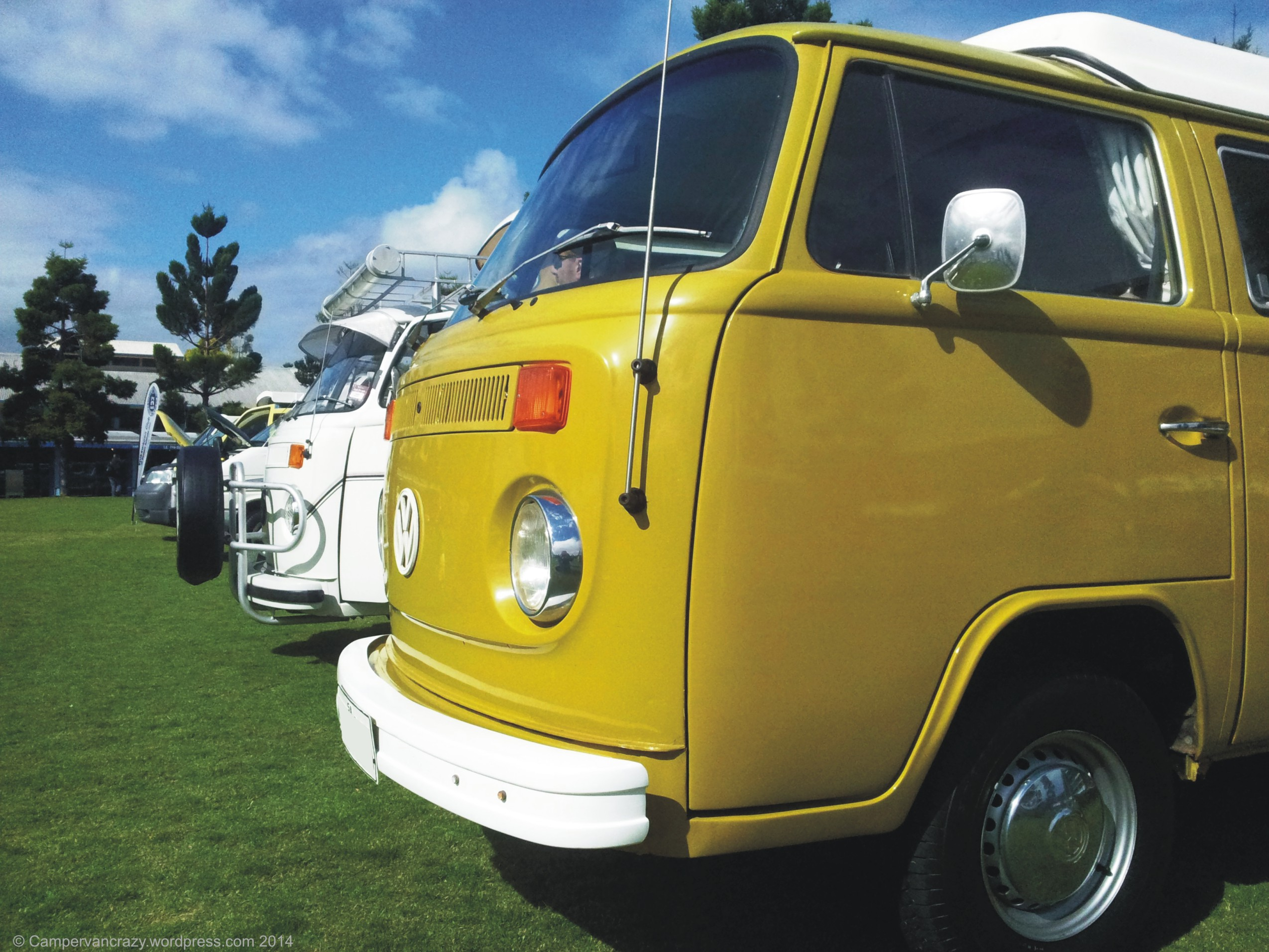 VW Bus Festivals | Campervan Crazy