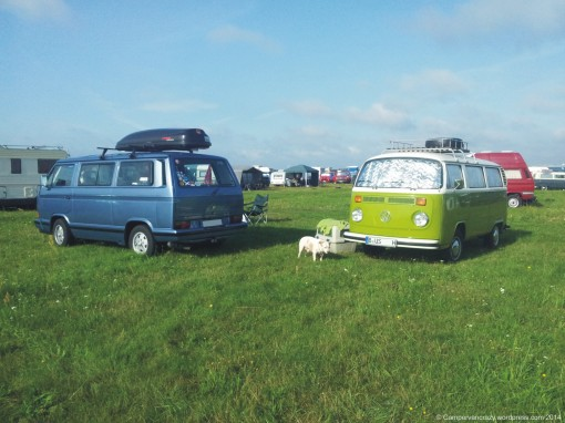 My friend's 1992 T3 Bluestar, Leon Dogwonder and Taiga Lily